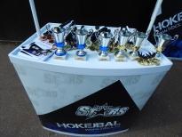 Superliga hokejalu 2015