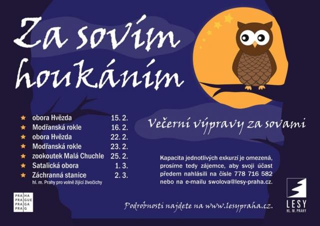 Blíží se komentované procházky za sovami v pražských lesích, foto Lesy Praha