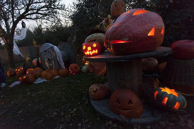 Trojskou botanickou zahradu rozzáří halloweenská světla, foto Pavel Florian