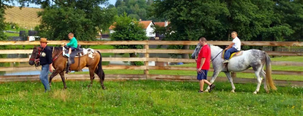 Ti, kteří nejraději poznávají svět z koňského hřbetu, mají u nás možnost projet si krásné okolí hotelu na koni. Služba je určena jak dětem, začínajícím jezdcům, tak i těm pokročilým.
