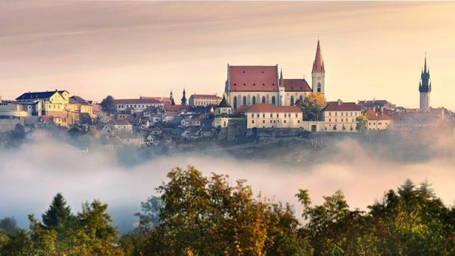 Poznejte okolí Hotelu Savannah, město Znojmo, Národní park Podyjí, Vranovskou přehradu, vinařské oblasti a další zajímavá místa.