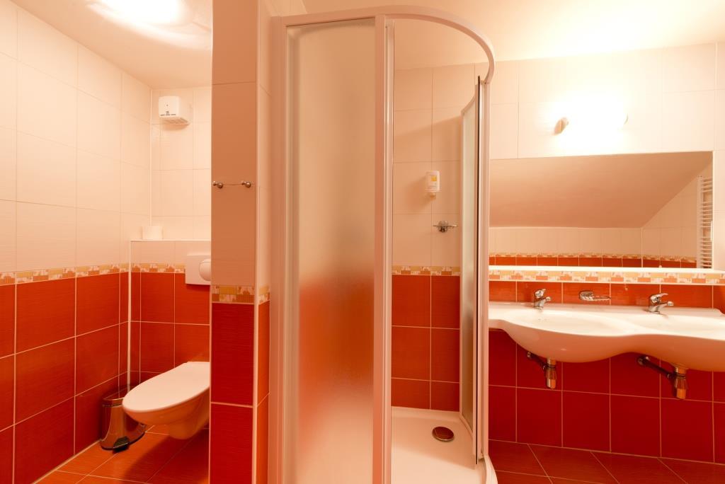 Všechny hotelové pokoje jsou vybaveny samostatným sociálním zařízením se sprchovým koutem, televizorem a telefonem. Ubytovací kapacita hotelu Svratka je 27 pokojů, 93 lůžek.