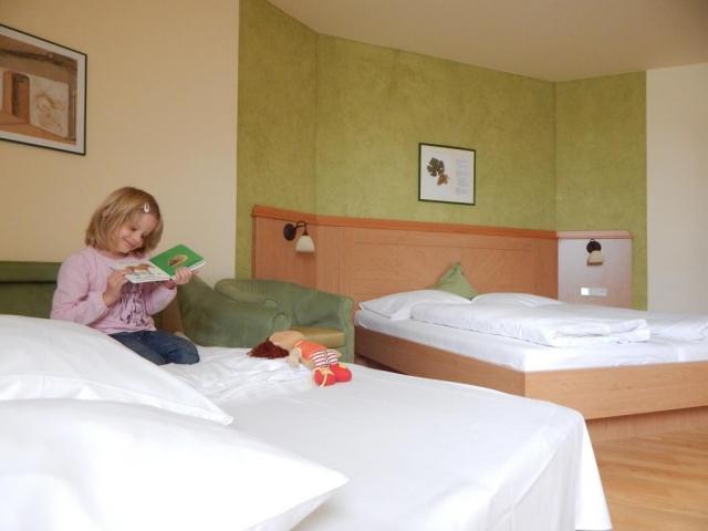 odinný pokoj 35 m2, dvoulůžkový pokoj, se snadno přístupnou sprchou nebo vanou, pokojový trezor, fén, židlička, koš na pleny, dětská postýlka