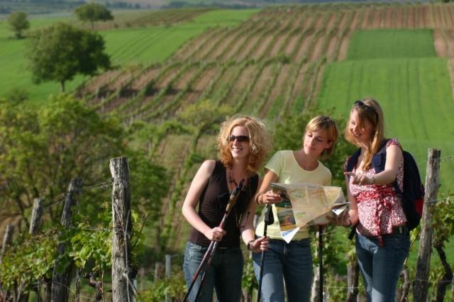 4hvězdičkový Hotel Veltlin se nachází na vinici ve vinařské vesnici Poysdorf v dolnorakouském regionu Weinviertel, asi 60 km severně od Vídně s výbornou dostupností z České republiky.