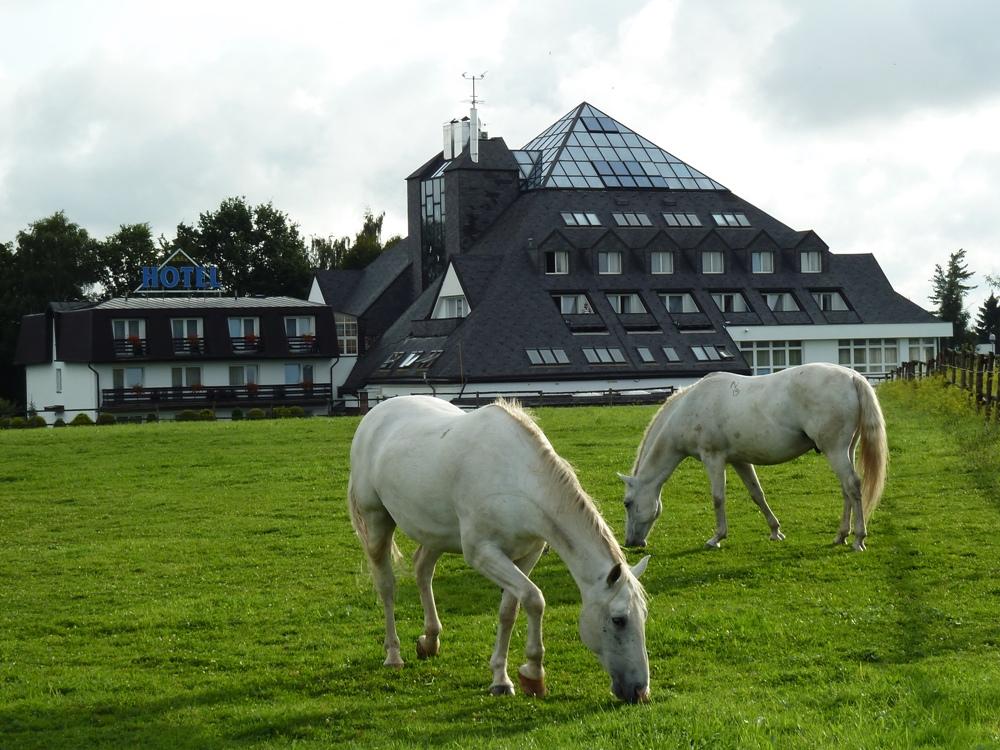 Hotelová obora Lázeňského hotelu Pyramida, foto Lázeňský hotel Pyramida