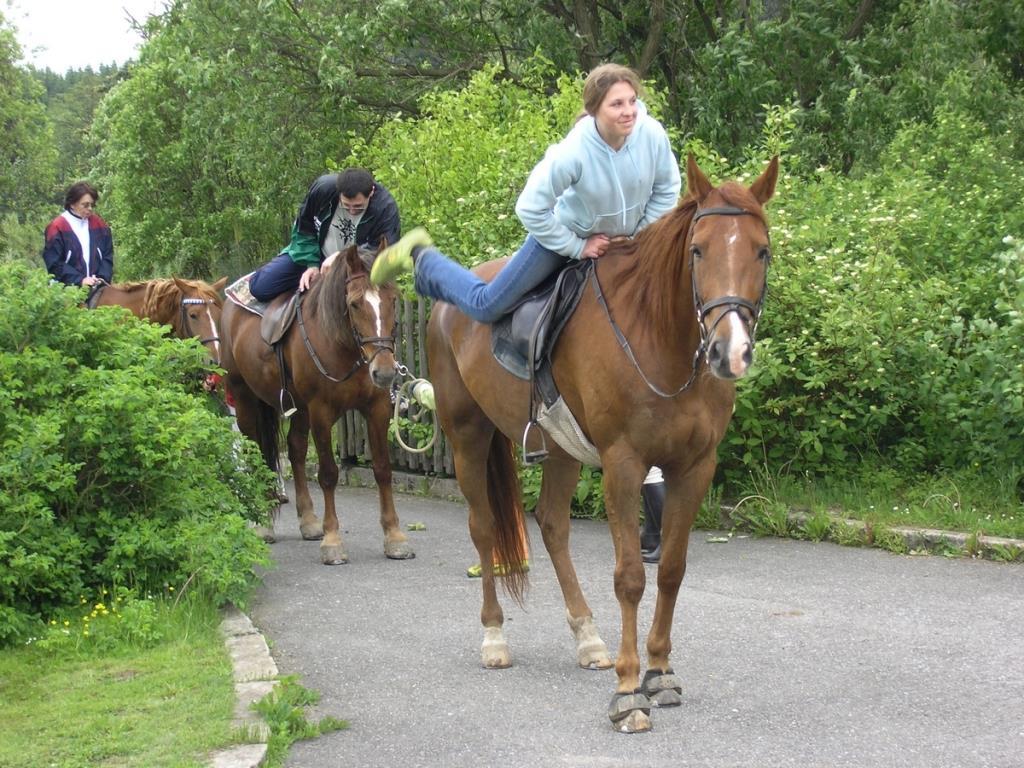Na objednání zajistíme projížďky na koních po překrásném okolí, ostatní hosté mohou navštívit jízdárnu vzdálenou 8 km. Foto hotel Skalský dvůr