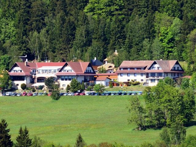 Hotel Podlesí, ubytování Vysočina, foto hotel Podlesí