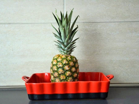 Ananas, plod téměř zázračný. Foto Praha Press