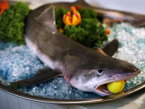 Kulinářství a gastronomie v Hotelu Grand MedSpa Marienbad