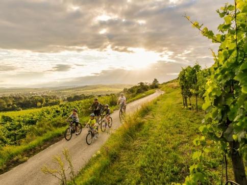 Kamptalradweg, foto © Niederoesterreich Werbung, Robert Herbst