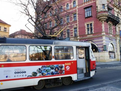 Na doméně PID.cz naleznete informace pro cestující, foto Praha Press