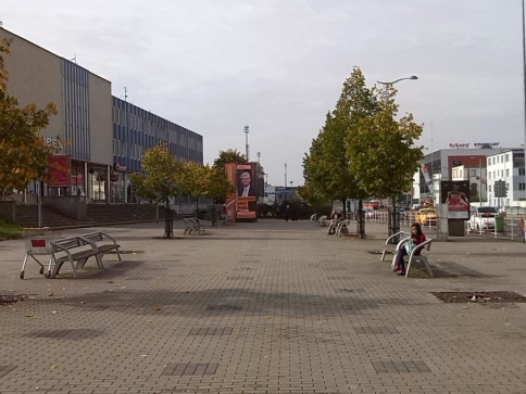 Prostor před libeňským nádražím se zazelená 15 novými pavlovniemi, foto Lesy Praha