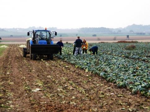 Školy mohou získat traktory, secí stroje, GPS navigace, drony nebo koně, foto: Praha Press