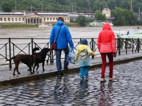 """Pes se hlásí o slovo: """"Já také trpím"""", foto: Stanislava Nopová"""