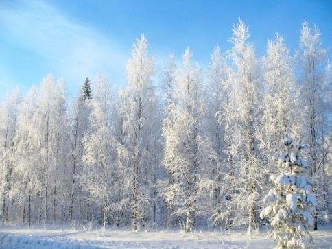 Severská filmová zima odstartuje v pražském kině Lucerna