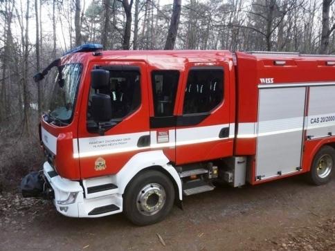 Pražští hasiči se školili v kácení nebezpečných stromů, foto: Lesy Praha