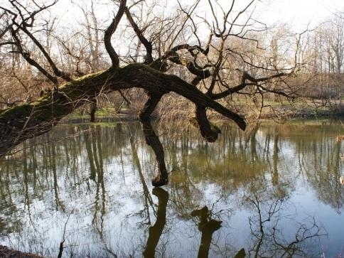 Ministerstvo zemědělství podpoří majitele rybníků, foto: Stanislava Nopová