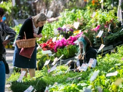 Nevynechejte slavnosti květin Floria v Kroměříži, foto: vystavistefloria.cz