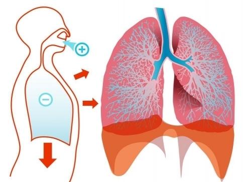 Nemocných s TBC ubylo za čtyři roky o pětinu