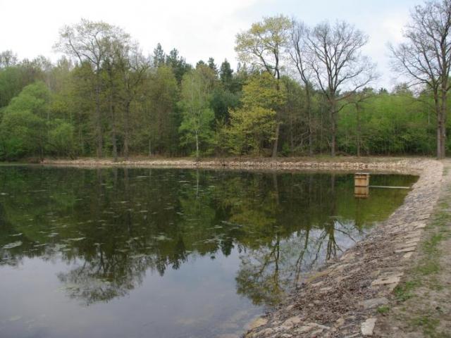 V Klánovickém lese se připravují dva rybníky ke sportovnímu rybaření, foto MHMP