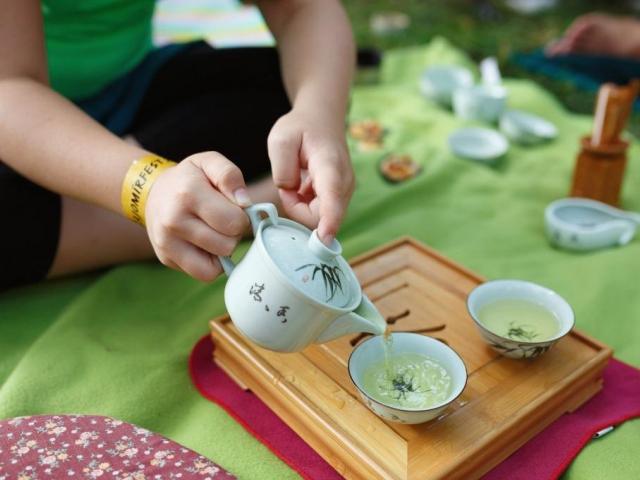 Pro milovníky čaje na Vyšehradě se koná Čajomír fest 2014, foto ČAJOMÍR o.s.
