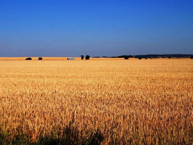 CPI Property Group vstupuje do agrorealitního byznysu, kupuje 20 tisíc hektarů zemědělské půdy, foto Praha Press