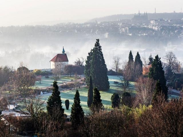 Botanická zahrada Praha připravila pro své návštěvníky vánoční dárek. Na Štědrý den otevře tropický skleník Fatu Morganu zcela zdarma. Foto: Pavel Florian