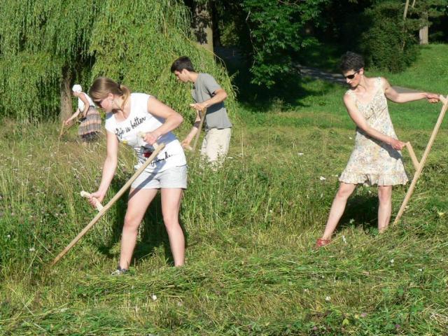 Naklepejte kosy, blíží se druhý ročník společného kosení ve Stromovce. Foto Petra Pospechova