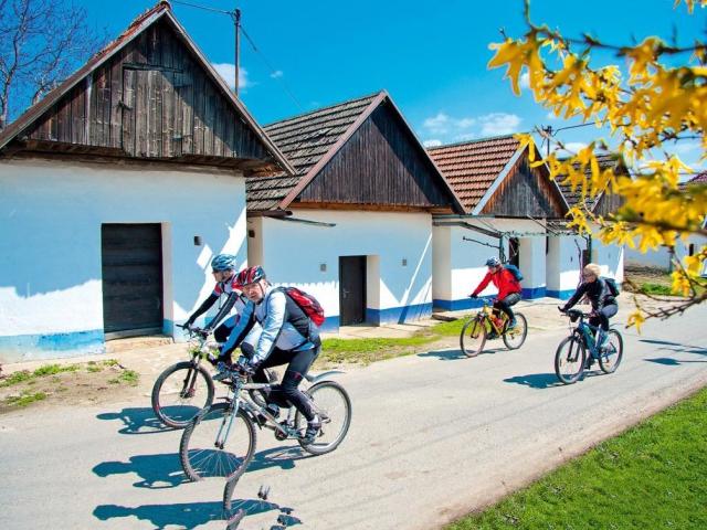 Cyklostezky vás přivedou k dobrému vínu na Východní Moravě, foto Vinařský fond, Východní Morava na kole