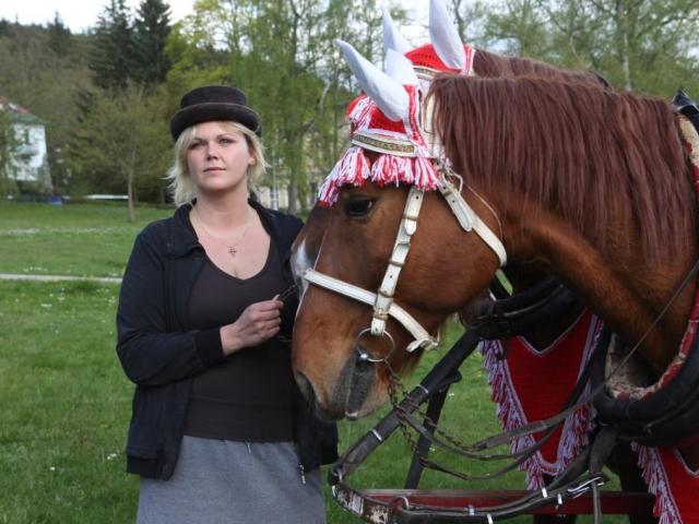 Na Šumavě na vás čekají noví speciální průvodci s koňmi a kočáry, foto NP Šumava