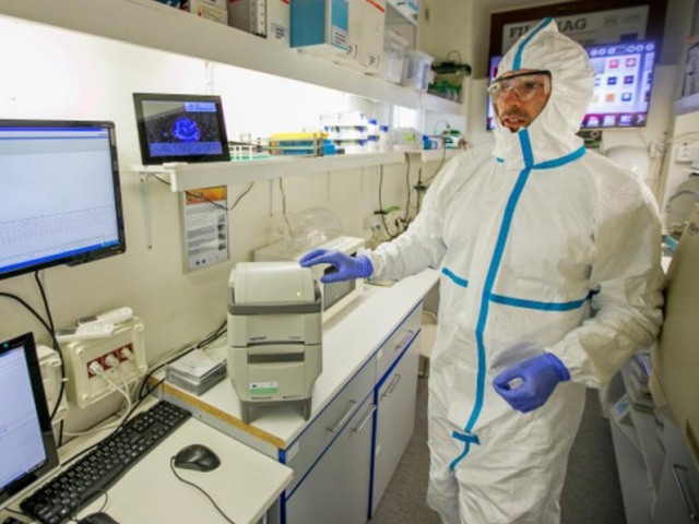 Vědecký tým Mendelovy univerzity vyvíjí nový diagnostický test. Ebolu rozpozná do půl hodiny. Foto MENDELU