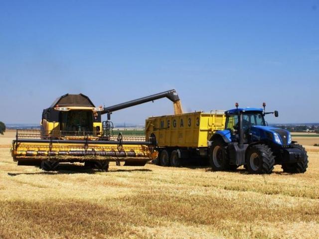 Ministerstvo zemědělství rozdělí podnikatelům 5 miliard z eurodotací, foto Praha Press