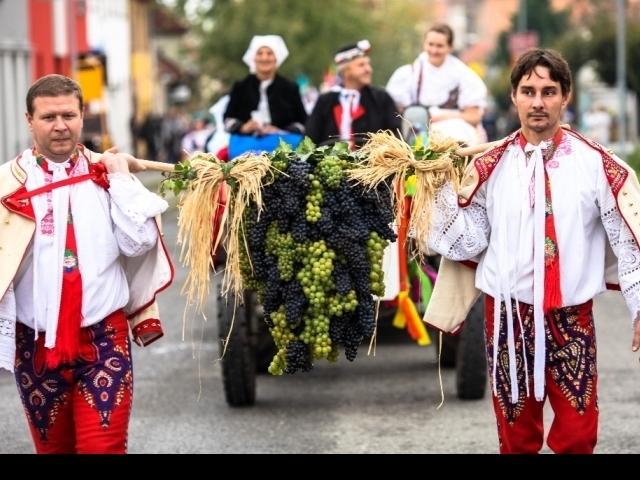 Pálavské vinobraní, foto Centrála cestovního ruchu - Jižní Morava, z.s.p.o