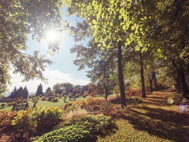 Podzim v botanické zahradě, foto Botanická zahrada Praha Troja