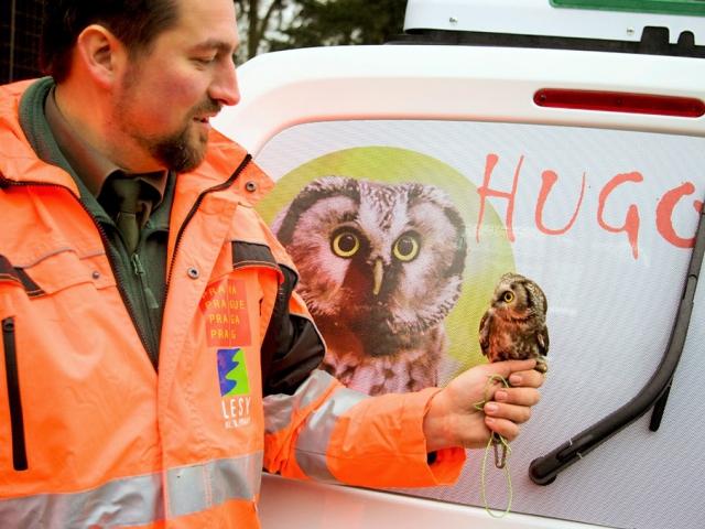 Záchranná stanice pro živočichy má nová odchytová vozidla, foto Lesy hl. m. Prahy