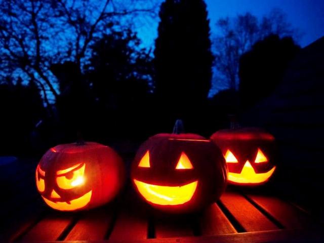 Přijďte na Halloween do Botanické zahrady. Foto Botanická zahrada Praha