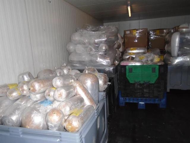 14 tun zmrazeného masa se vrátí do zemí původu, foto Celní úřad pro hlavní město Prahu