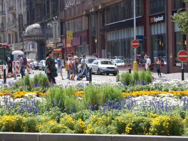 Vědecká rada NPÚ nesouhlasí s vjezdovými rampami z prostoru Václavského náměstí