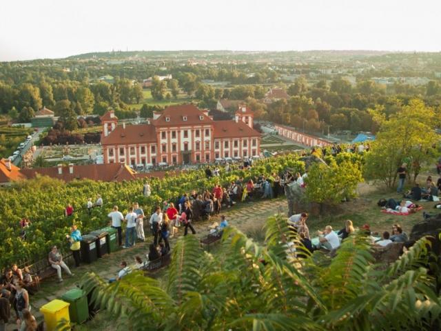 Vinobraní sv. Kláry bude opět v trojské botanické zahradě, foto Botanická zahrada
