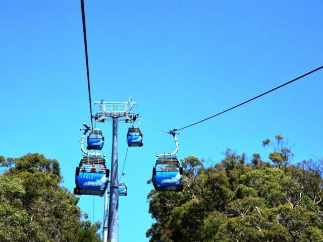 Svezte se v Austrálii na sedačkové lanovce EAGLE, o kterou se zasloužil schopný Čech Dr. Vladimir Hayek, foto: Stanislava Nopová