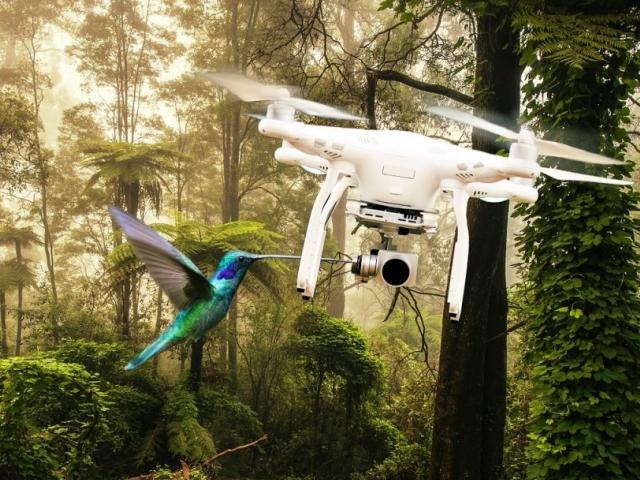 Fanoušci i odborníci míří na Silicon Valley Drone Show 2018, foto: pixabay.com ThomasWolter