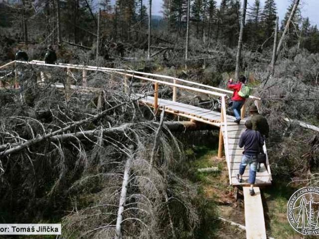 Lesy ČR uzavřely dvě turistické trasy na Boubíně, foto: npsumava.cz