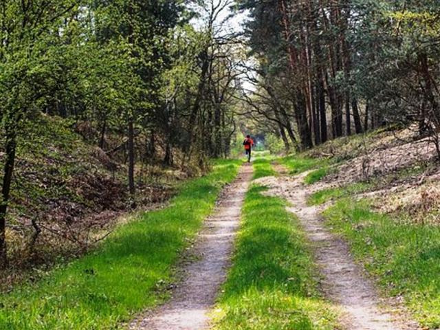 Běžecký trailový závod v Modřanské rokli, ilustrační foto