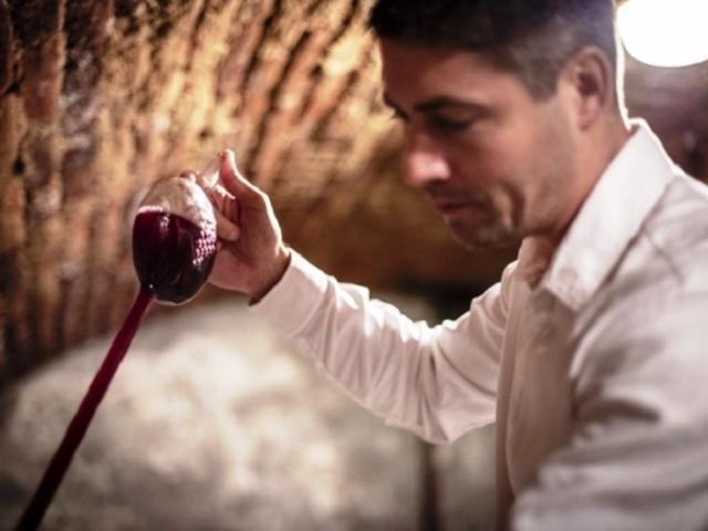 Mendelova univerzita chystá v jubilejním roce luxusní víno i pivní speciály, foto: Mendelova univerzita
