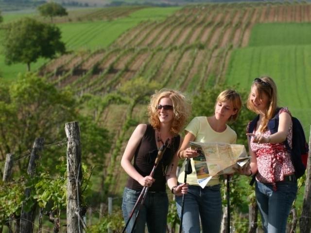 Nenechte si ujít 3denní pobyt v kraji vinic